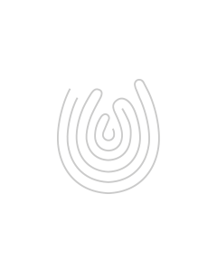 Gift Box Wooden Single Magnum with Perspex Lid